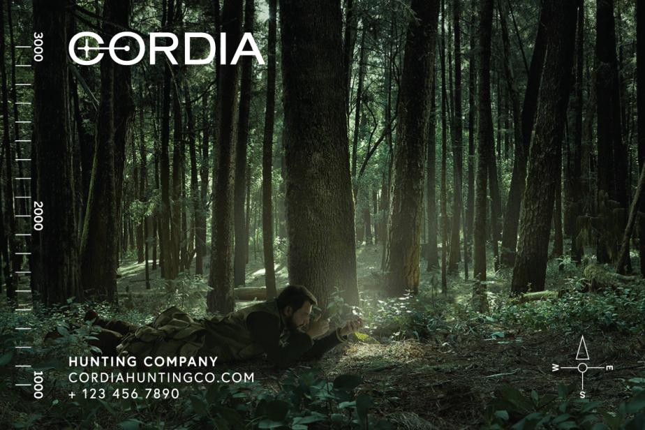 cordia-imageelements